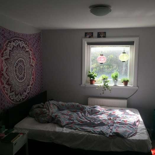 Double bed room in 4-bedroom flat in London