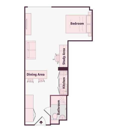 Luxury Plus Studio