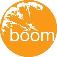 Boomsatsuma Education